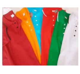 Yazlık Polo Yaka T-Shirt İş Elbisesi